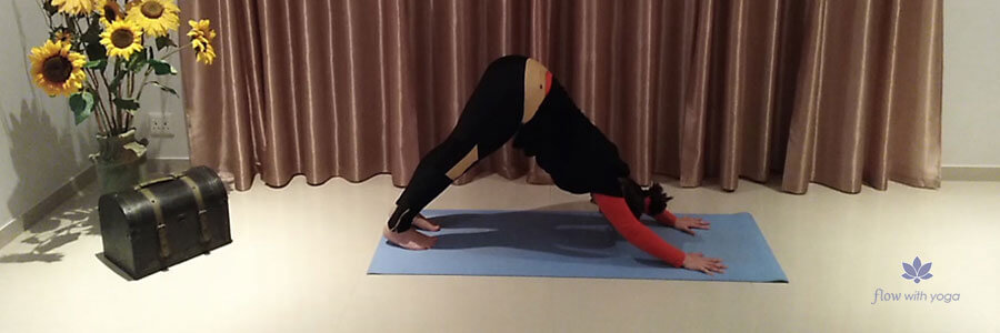 Adho Mukha Svanasana – Downward Facing Dog Pose