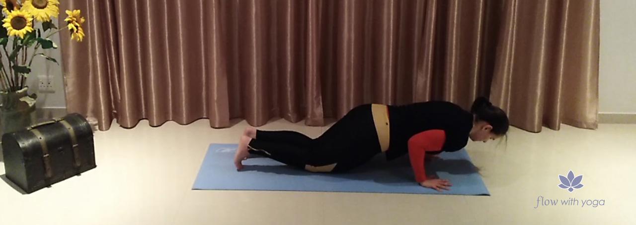 Chaturanga Dandasana Modified -Four Limb Staff Pose